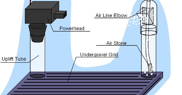 Cara Memilih Filter Terbaik Untuk Aquascape Perikanan