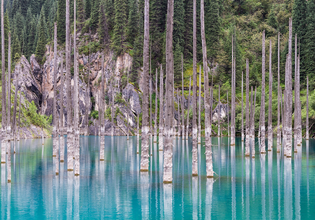 Kazakhstan's Sunken Forest rises from the crystal-clear Lake Kaindy, a natural phenomenon formed after an earthquake in 1911 that has left the tall narrow trees partially submerged