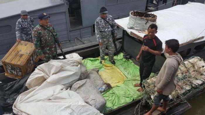 Petugas mengamankan 50 bal monza