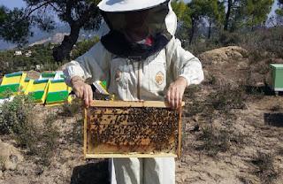 Εκδήλωση από το κέντρο «Δήμητρα» Σκύδρας για τα Μελισσοσμήνη