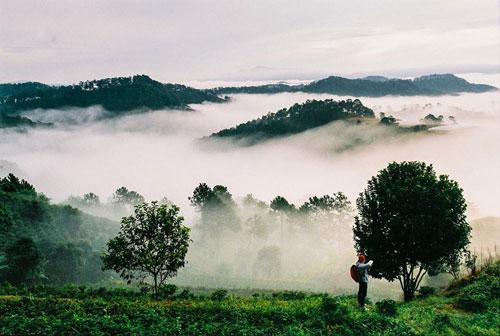 Hình ảnh buổi sáng tại Đà Lạt