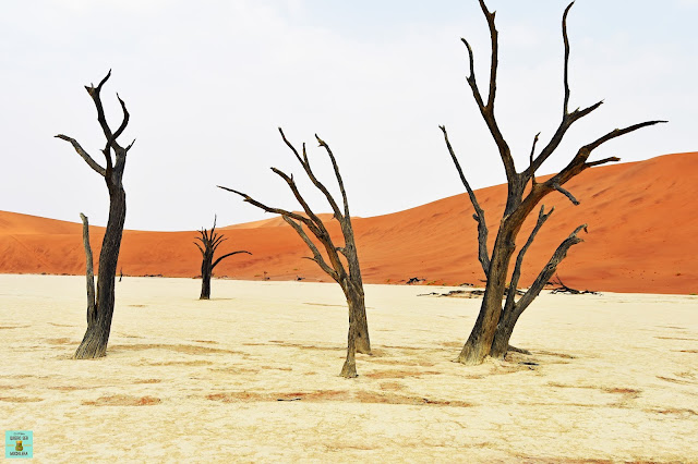 Deadvlei, Namib-Naukluft National Park (Namibia)