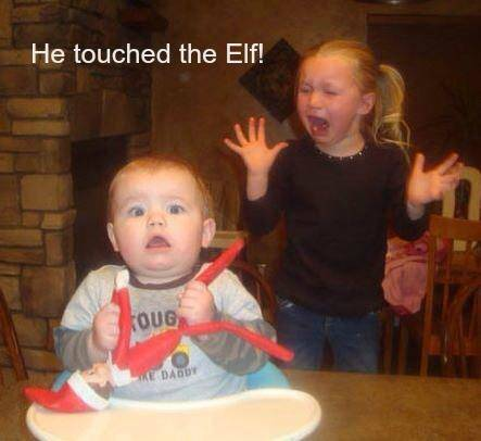 He Touched the Elf! meme - Friday Frivolity - Holiday Cheer, One Way or Another - Christmas Memes + LINKY for all things Fun, Funny, Happy & Hopeful!