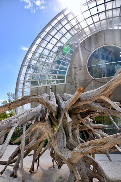 The Crystal Bridge Conservatory at the Myriad Botanical Gardens in OKC