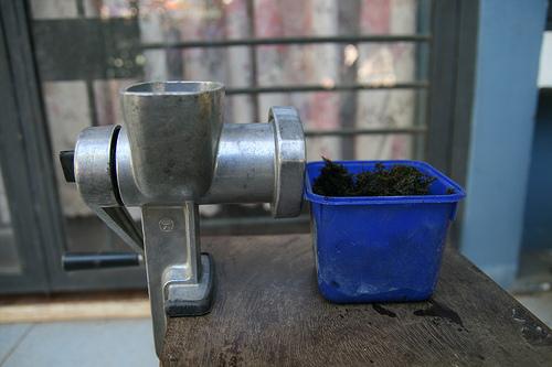 Cách cấy mini fiss thủy sinh lên đá và nền - dùng dao băm nhuyễn