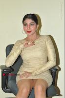 Actress Pooja Roshan Stills in Golden Short Dress at Box Movie Audio Launch  0069.JPG