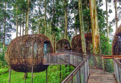 Wisata alam dusun bambu lembang bandung barat