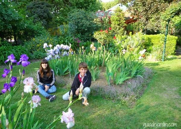 Un paseo por el jard n de las plantas de par s guia de for Guia de plantas de jardin