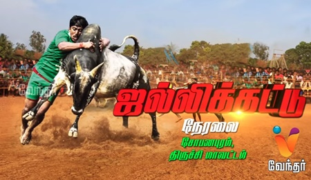 Tiruchi Jallikattu – Exclusive coverage
