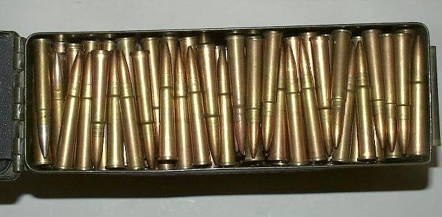 Lee Enfield .303 bullets.