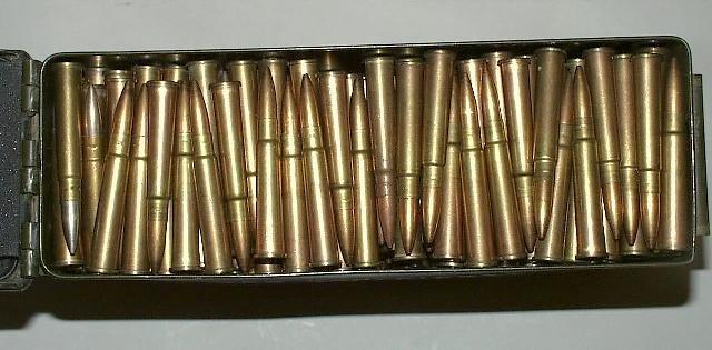 Lee Enfield .303 bullets.