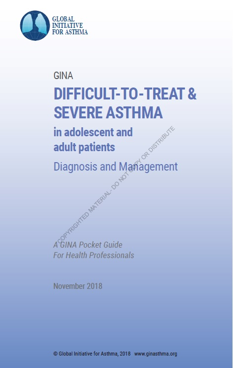 https://ginasthma.org/wp-content/uploads/2018/11/GINA-SA-FINAL-wms.pdf