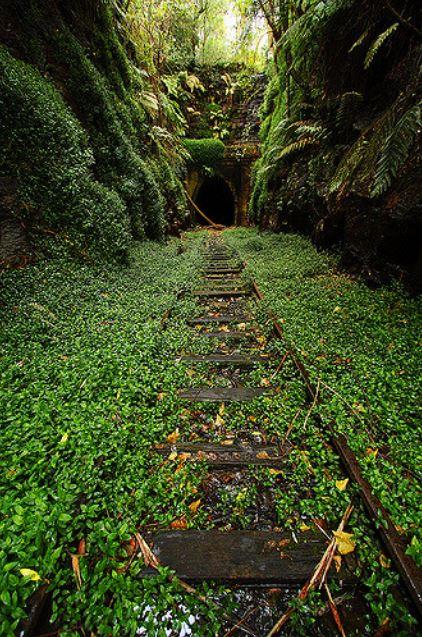 Este é um antigo túnel ferroviário em Helensburgh. A melhor parte é que você pode encontrar uma pequena colônia de vaga-lumes lá