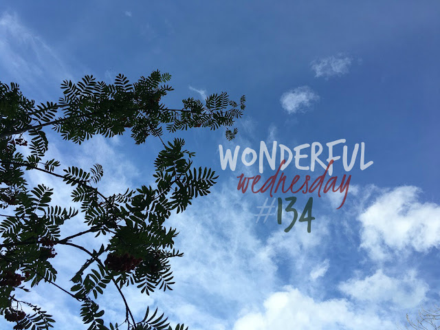 Wonderful Wednesday #134