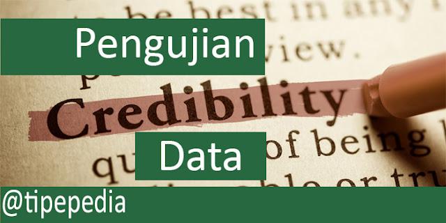 Cara Menguji Kredibilitas Data dalam Penelitian Kualitatif