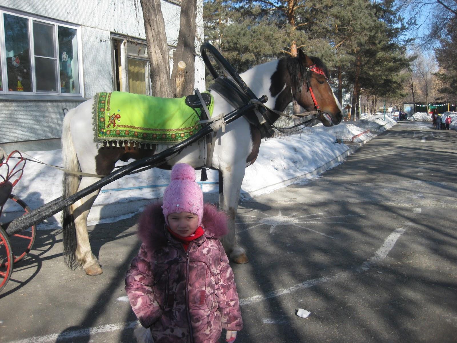 Эльза ездила в карете фото