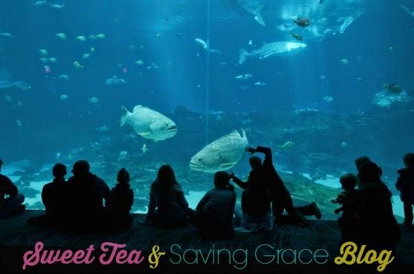 Georgia Aquarium - www.sweetteaandsavinggraceblog.com