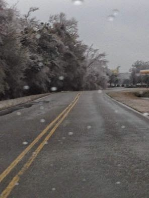 Icy trees falling down over the road