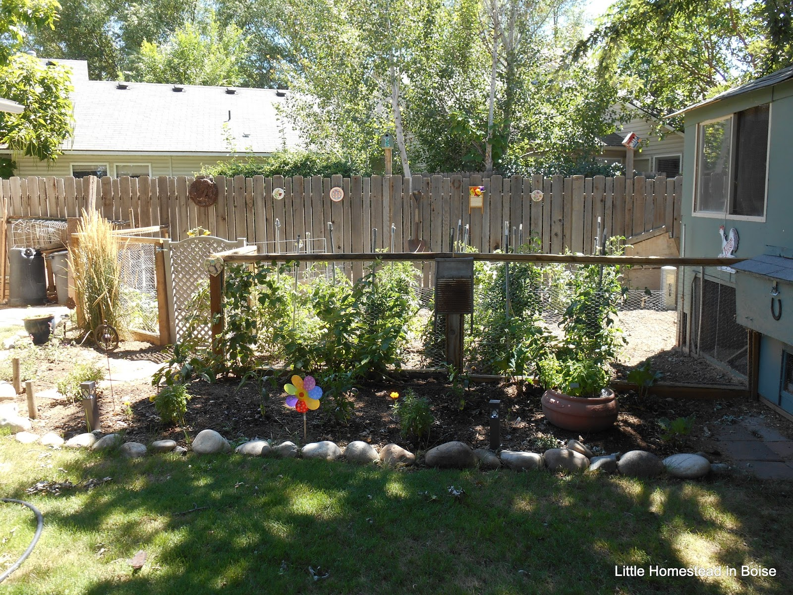 Little Homestead In Boise Little Homestead Year In
