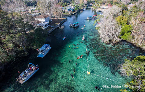 Cristal River –  Flórida
