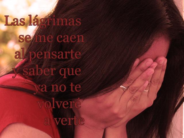 Las lágrimas se me caen al pensarte y saber que ya no te volveré a verte