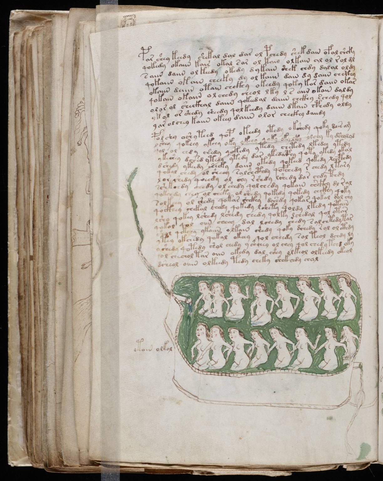 manuscrito146