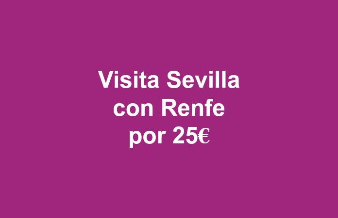 Billete de tren por 25€ los 25 de mes