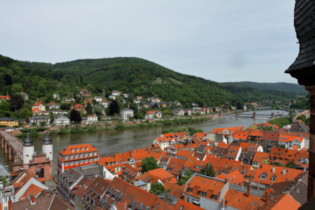 Beautiful Neckar river view from the top of Heiliggeistkirche