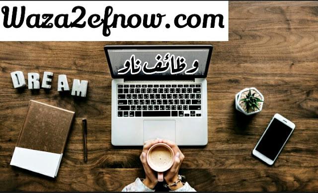 وظائف شاغرة للمحاسبين اليوم في مصر | وظائف ناو