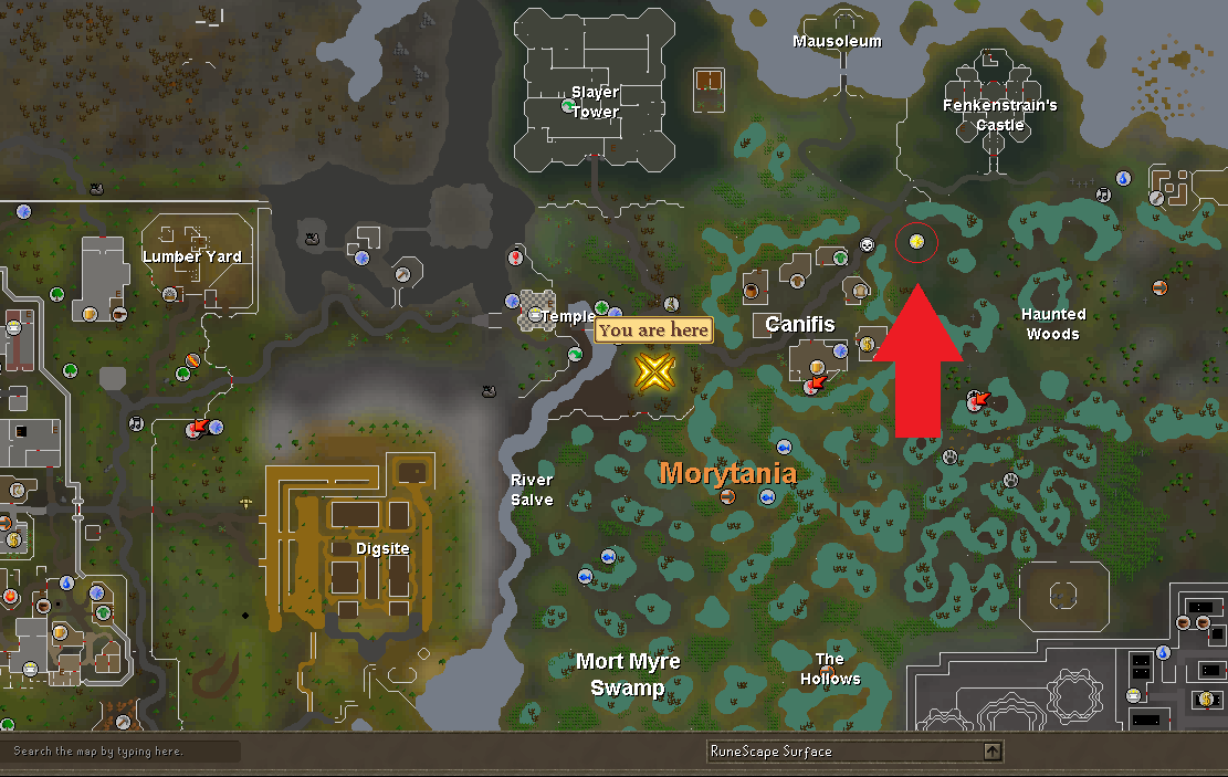 Runescape player owned ports guide