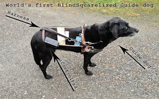 The BlindSquare App Uses Foursquare To Help the Blind Navigate Streets