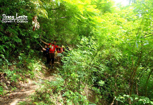 Mt. Tibig Trail