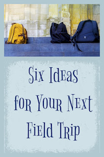 Six Ideas for Your Next Field Trip on Homeschool Coffee Break @ kympossibleblog.blogspot.com - part of the Field Trip Inspiration Round-up hosted at HomeschoolReviewCrew.com