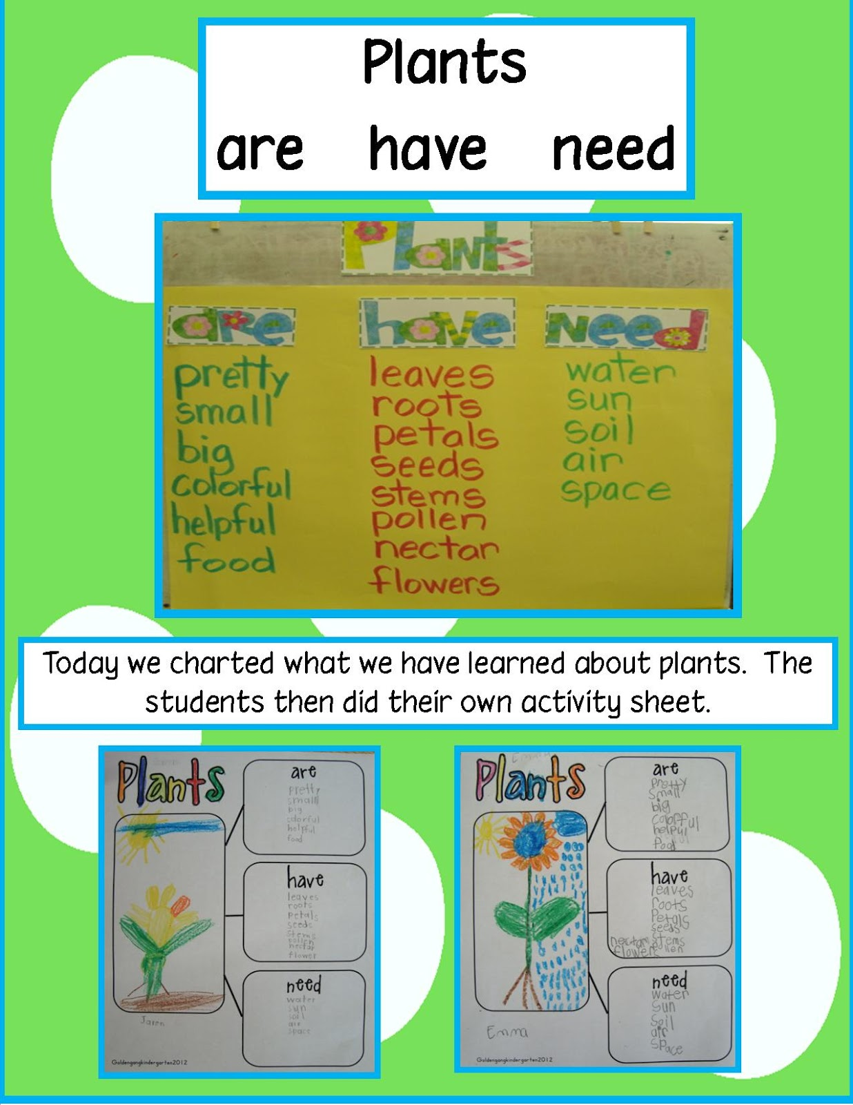 Golden Gang Kindergarten Plants Are Have Need