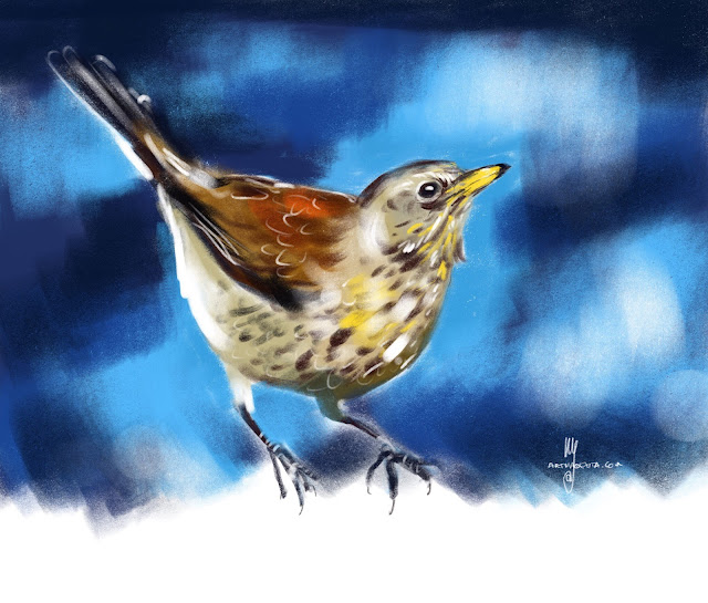 Fieldfare bird painting by Artmagenta