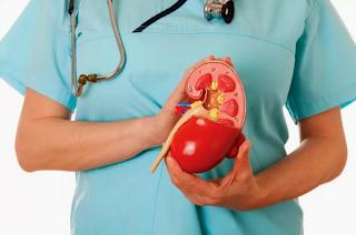 Diet Penyakit Ginjal Kronik Dengan Hemodialisa