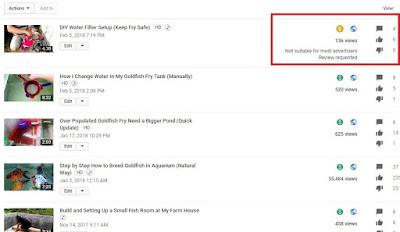 Meminta Review Manual Pihak Youtube untuk Monetisasi Video