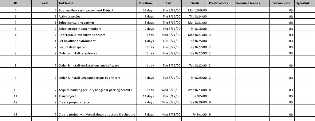 Business Process Improvement Plan project management