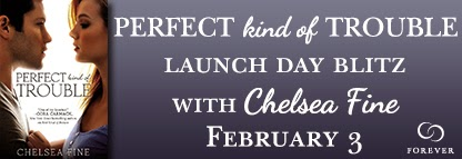Perfect Kind of Trouble Launch Day Banner