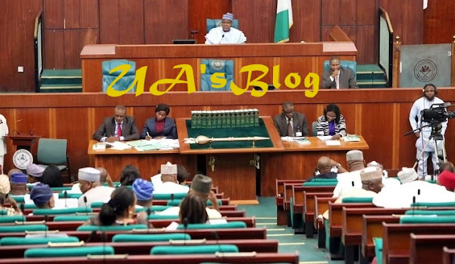 House of Reps threatens to jail Buhari's ministers, gives reasons