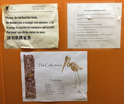 signs royal ontario museum ornithology