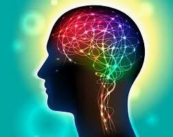 Trend Evolusi Manusia Masa Depan Berbasis Neurosains