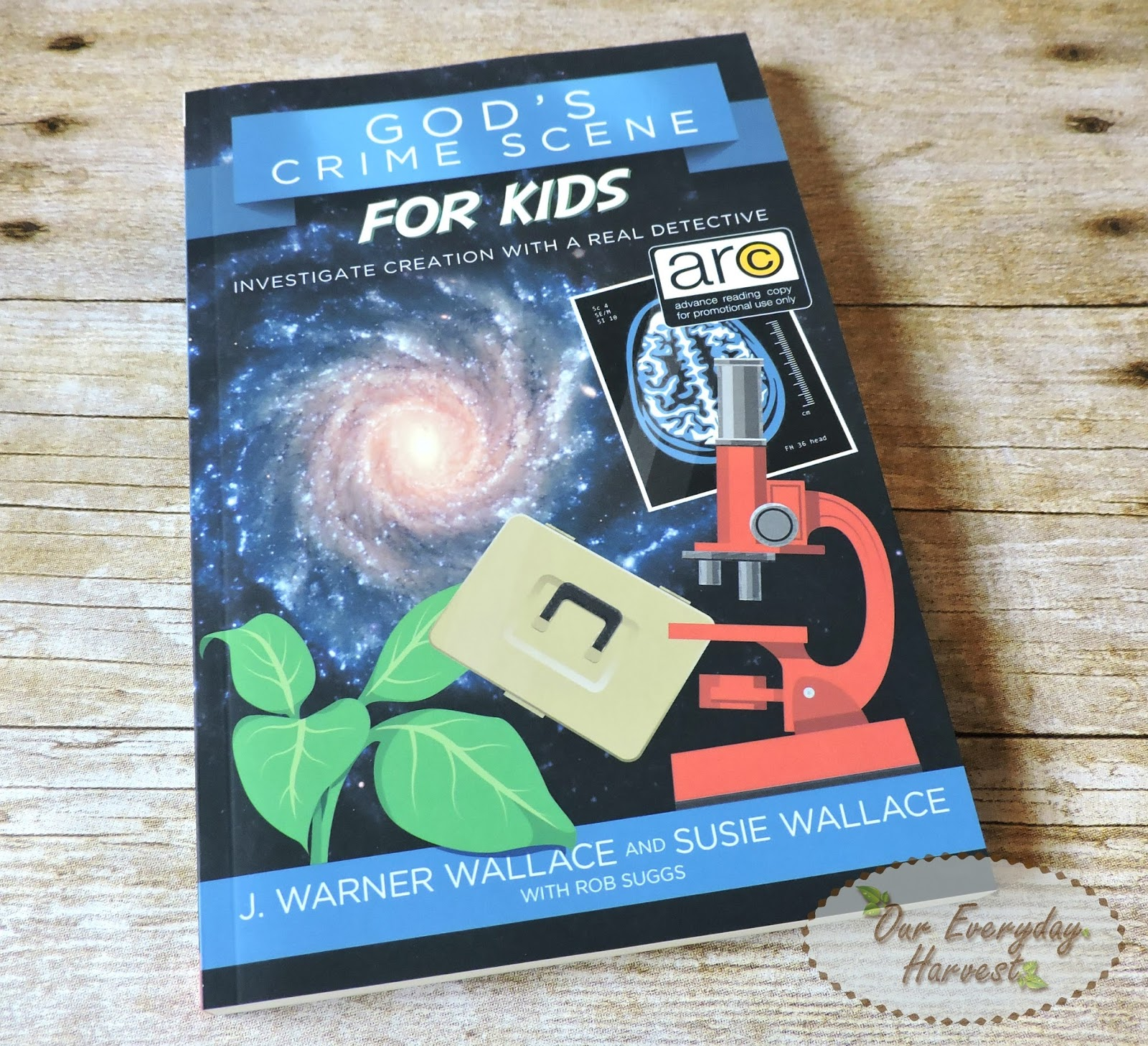god u0027s crime scene for kids book review and promotion announcement
