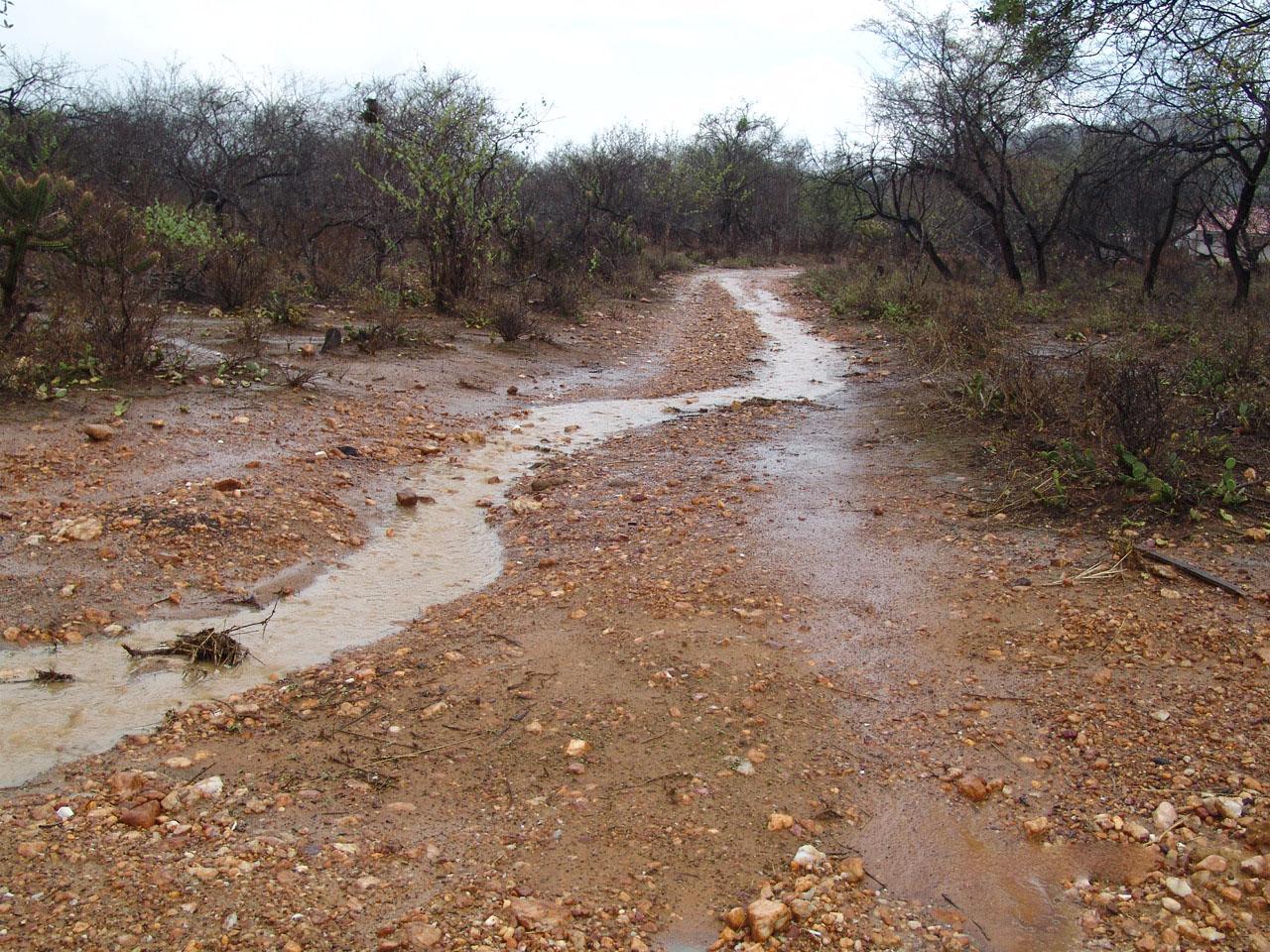 trairi-no-ceara-tem-chuva-de-98-mm-nesta-quarta-feira