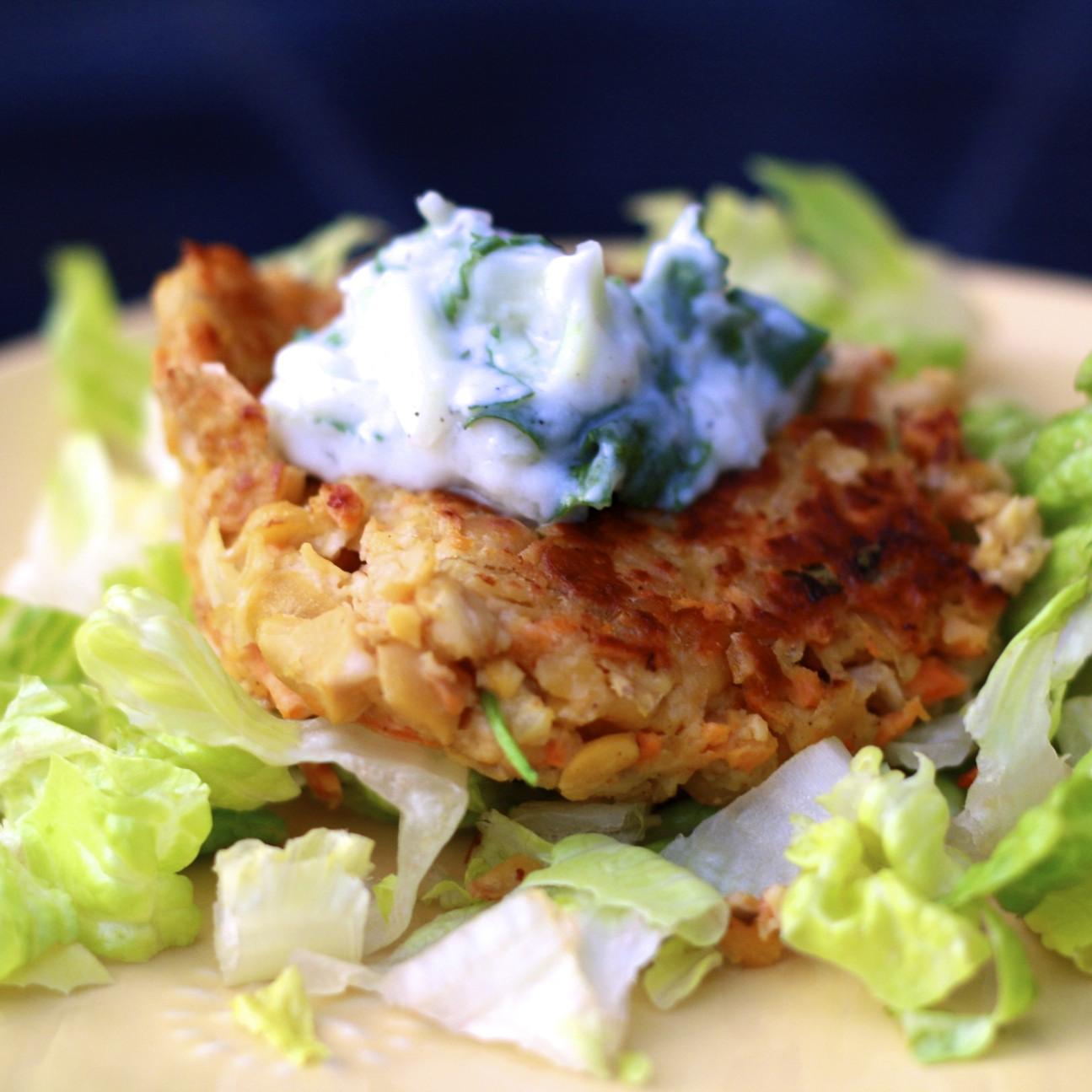 Chickpea Cakes America S Test Kitchen