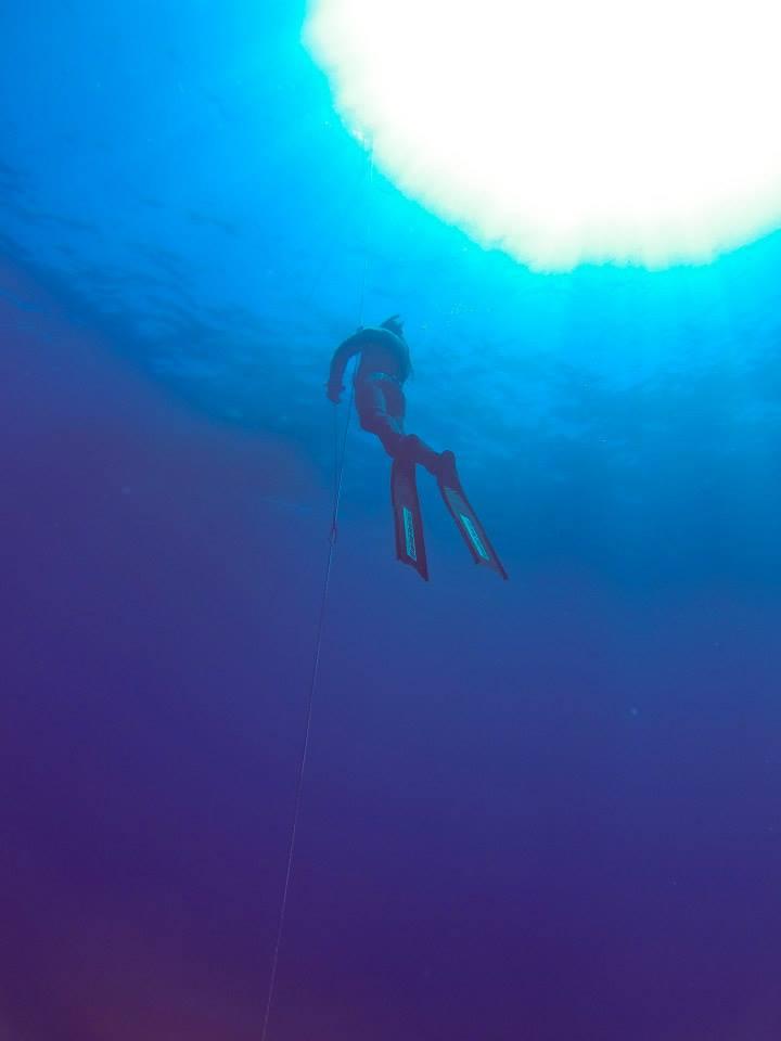 que-hacer-ver-gran-canaria-bautismo-buceo-avistamiento-cetaceos