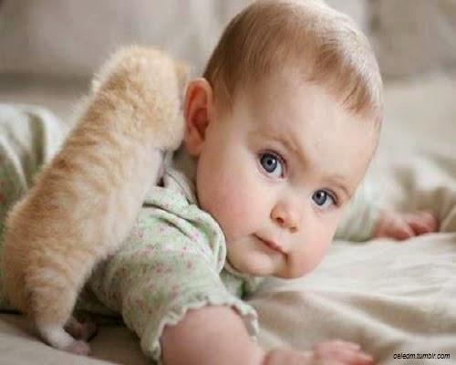 Bébé  et petit chat