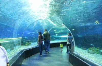 Ocean Park Oceanarium