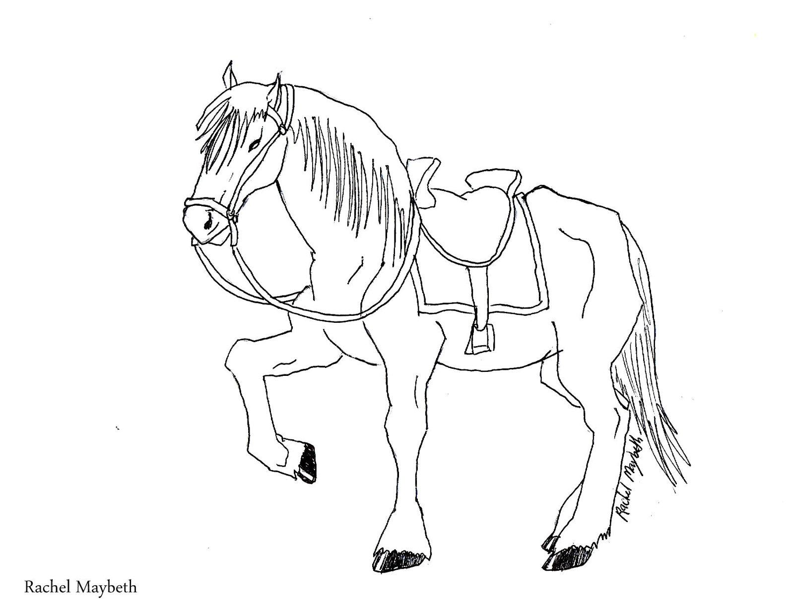 Coloring Pages Or Realistic Horses