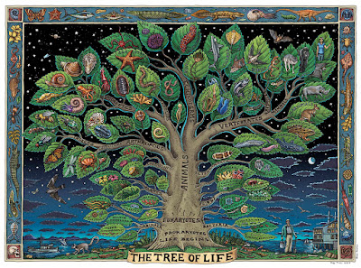 Tree of Life Meaning - Overview Article